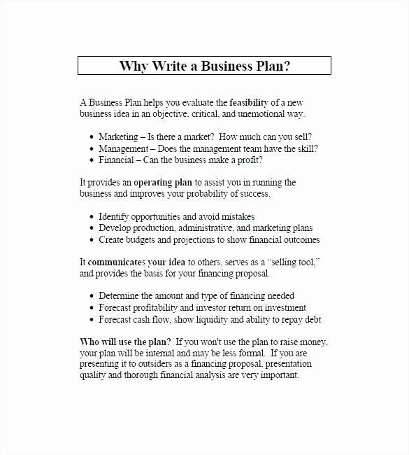 Music Marketing Plan Template Elegant Internal Marketing Plan Template Music Business Plan