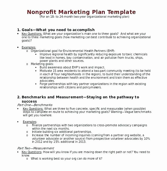 Music Marketing Plan Template Fresh Music Marketing Plan Template Easy Writing Free Templates