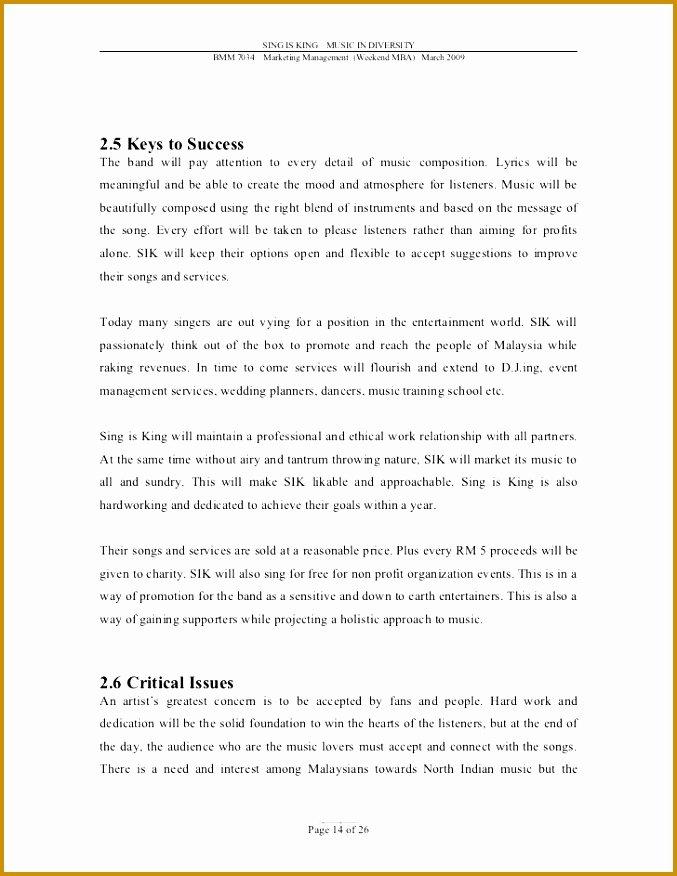 Music Marketing Plan Template Lovely 3 Music Business Plan Template