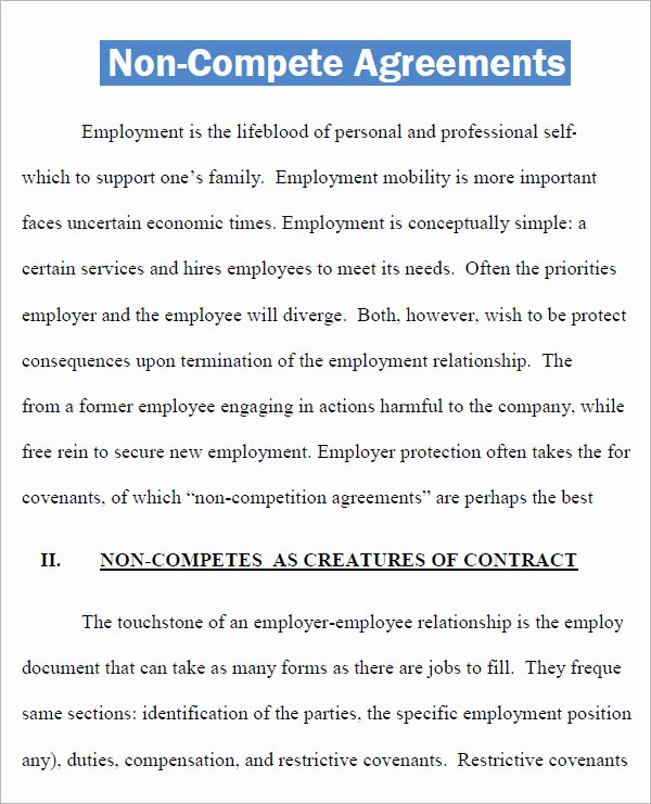 Non Compete Clause Template Luxury Non Pete Agreement 7 Free Pdf Doc Download