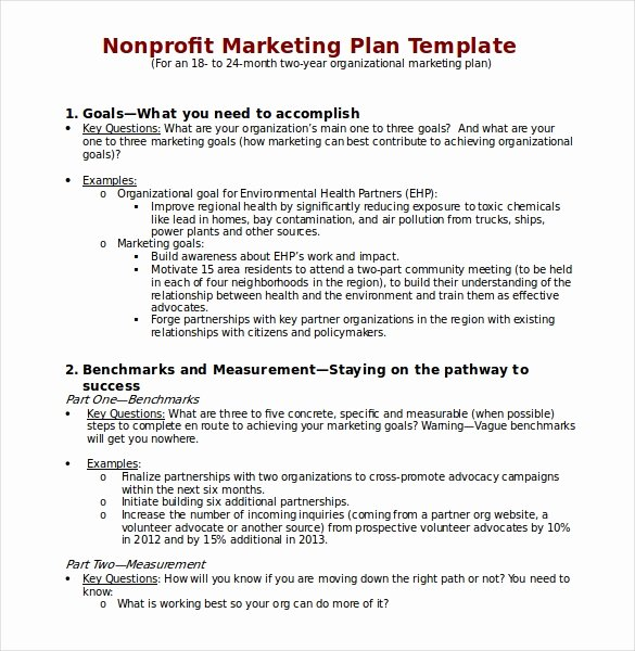 Nonprofit Marketing Plan Template Beautiful 22 Microsoft Word Marketing Plan Templates
