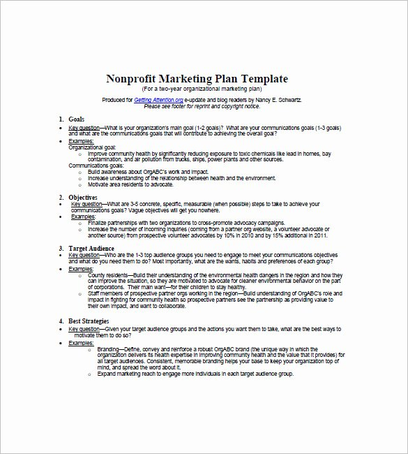 Nonprofit Marketing Plan Template Lovely Non Profit Marketing Plan Template – 10 Free Word Excel