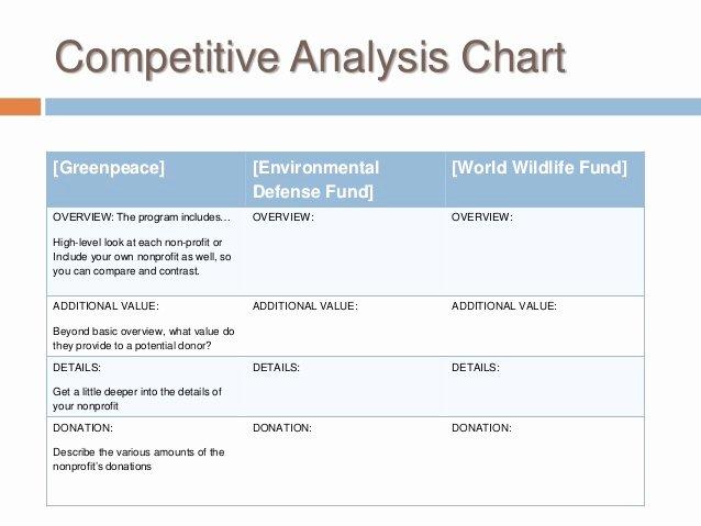 Nonprofit Marketing Plan Template Luxury Buss 424 Marketing Plan Non Profit Marketing Plan Template 2