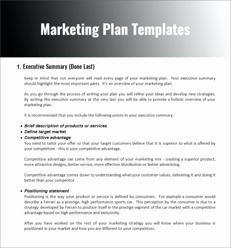 Nonprofit Marketing Plan Template Luxury Non Profit organization Plan Template
