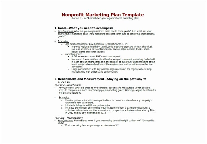 Nonprofit Marketing Plan Template Luxury the Essential Guide to Making A Business Plan