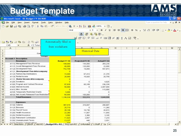 Nonprofit Operating Budget Template Luxury Operating Bud Template