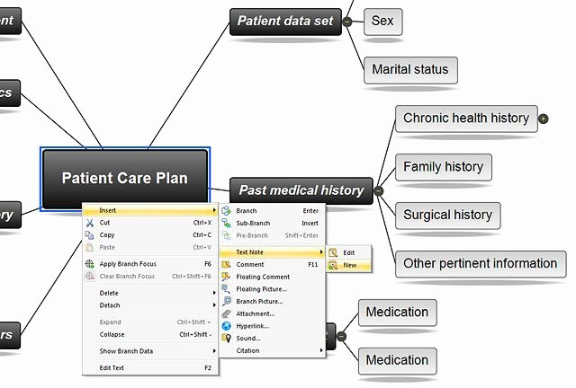 Nursing Concept Map Template Best Of Concept Mapping software for Nursing