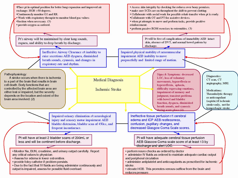 Nursing Concept Map Template Best Of Nursing Diagnosis Concept Maps