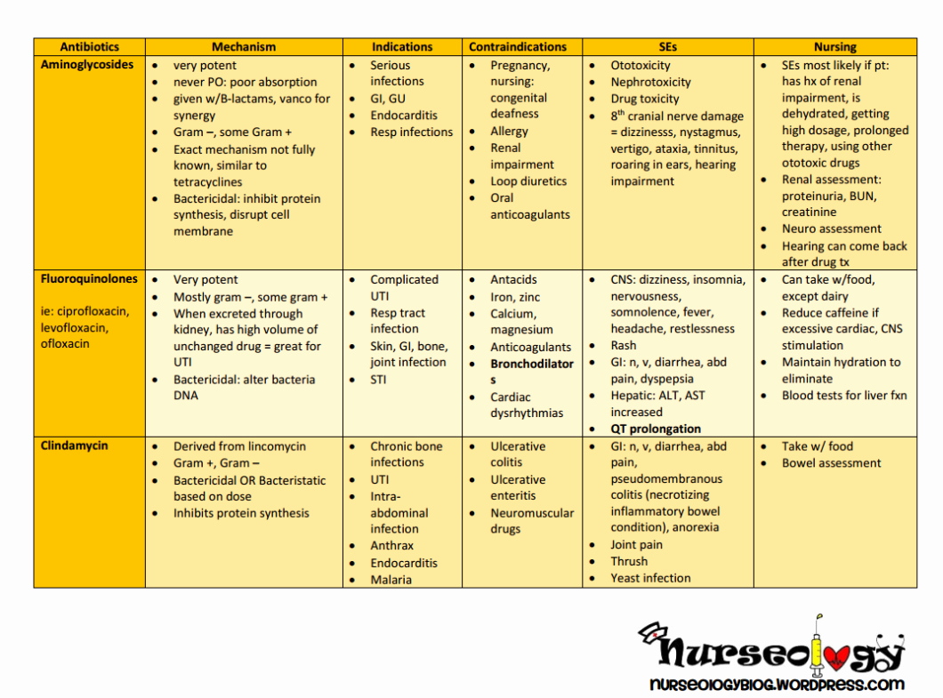 Nursing Drug Card Template Elegant Printable Drug Cards Antibiotics – Nurseology Blog