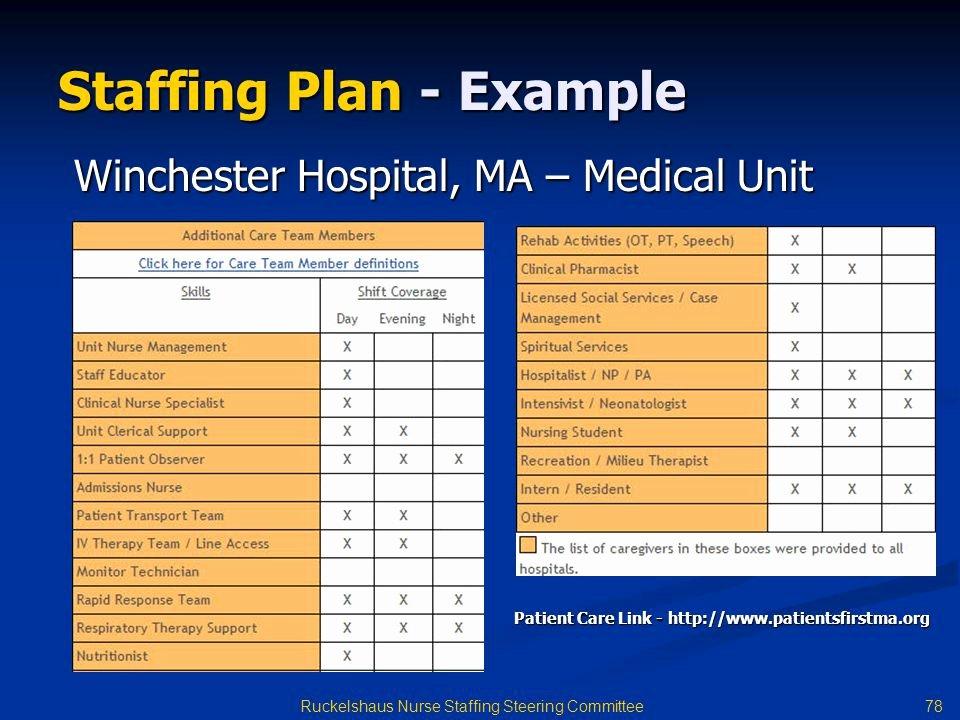Nursing Staffing Plan Template Elegant Staffing Plan Template Word Tierianhenry