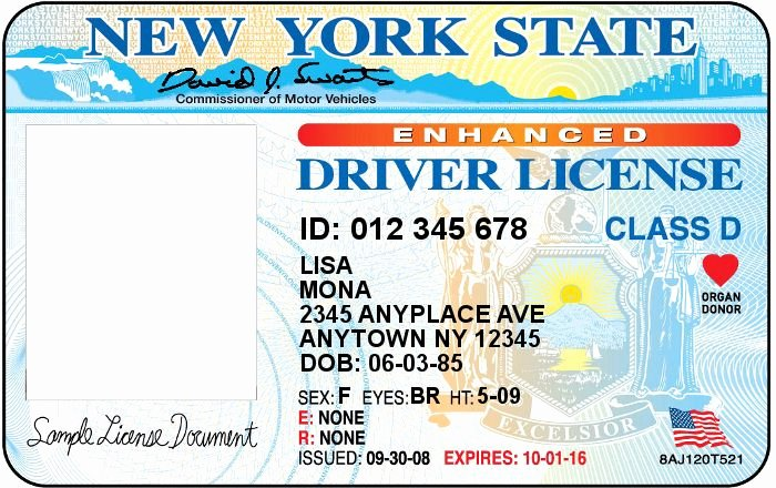 Nyc Report Card Template Lovely 33 Best Driver License Templates Photoshop File Images On