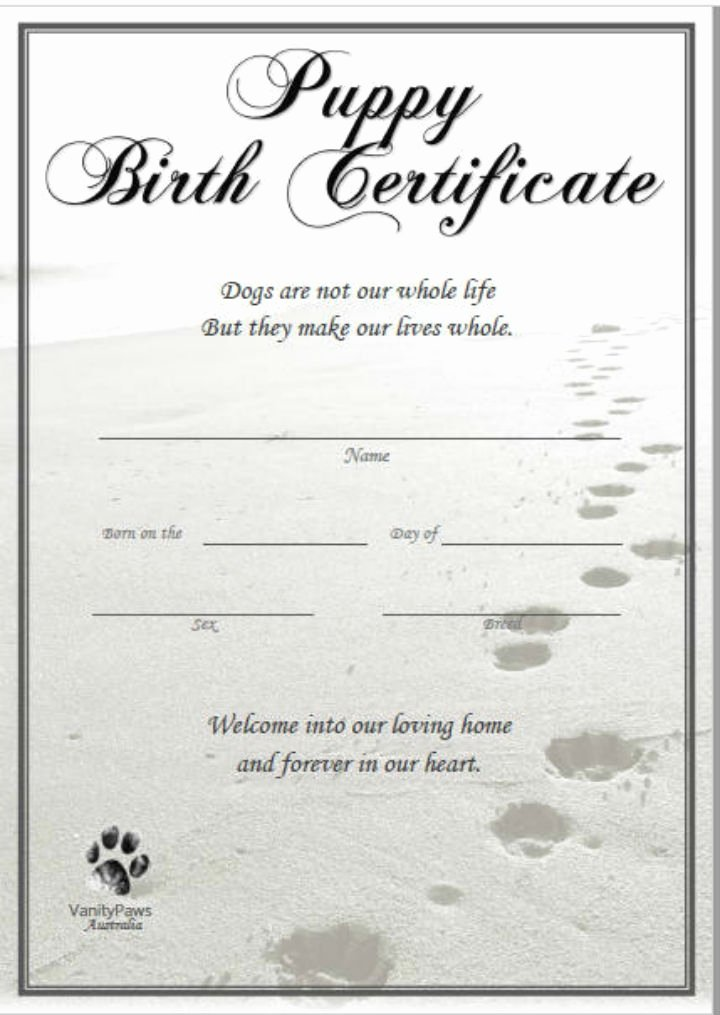 pet birth certificates