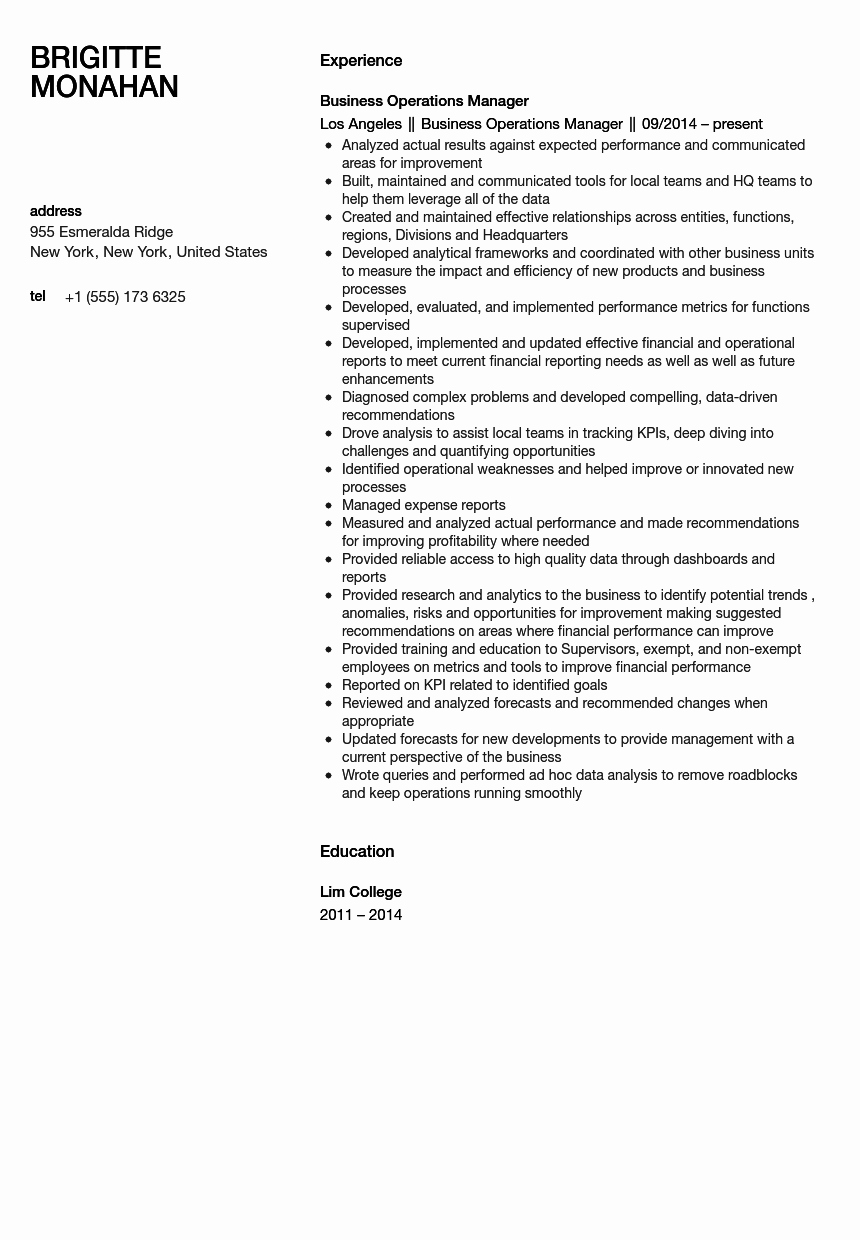 Operation Manager Resume Template Inspirational Business Operations Manager Resume Sample