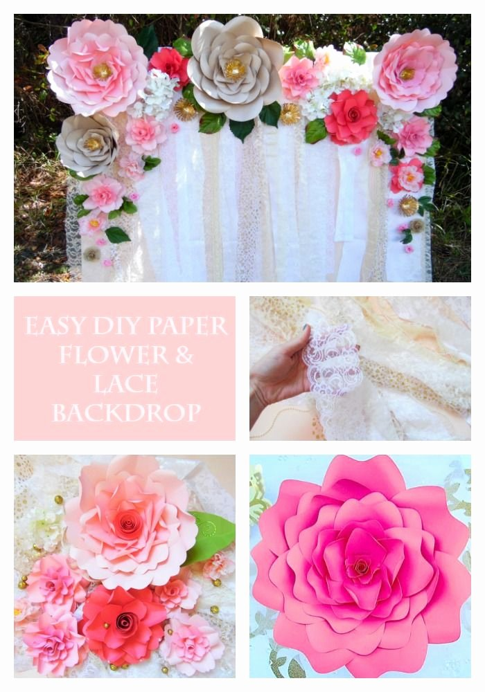 Paper Flower Backdrop Template Beautiful 34 Best Images About Diy Giant Paper Flowers On Pinterest