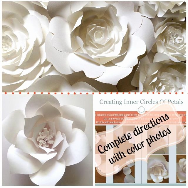 Paper Flower Backdrop Template Unique Diy Paper Flower Template Create Your Own Paper Flower