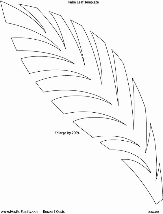 Paper Flower Leaf Template Luxury Image Result for Free Paper Flowers Templates