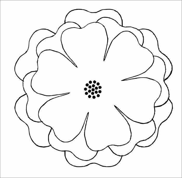 Paper Flower Template 3d Best Of Flower Template Free Templates