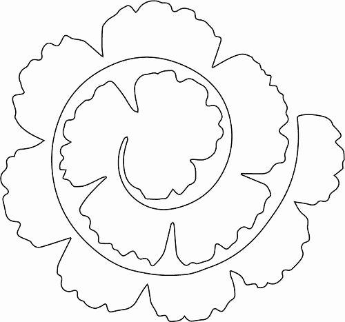 Paper Flower Template 3d Lovely 25 Best Ideas About Flower Template On Pinterest