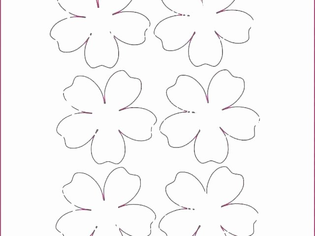 Paper Flower Template Pdf Luxury Mini Paper Flower Template – Hafer