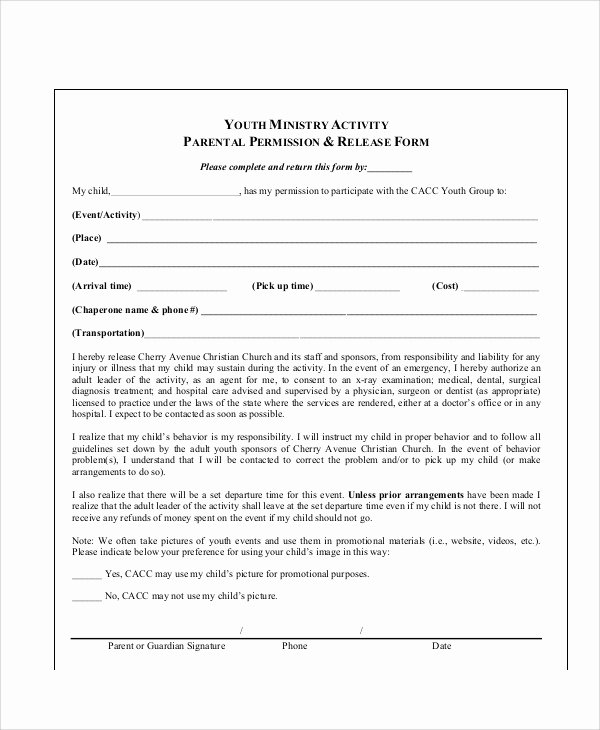 Parent Release form Template Beautiful 10 Sample Parental Release forms