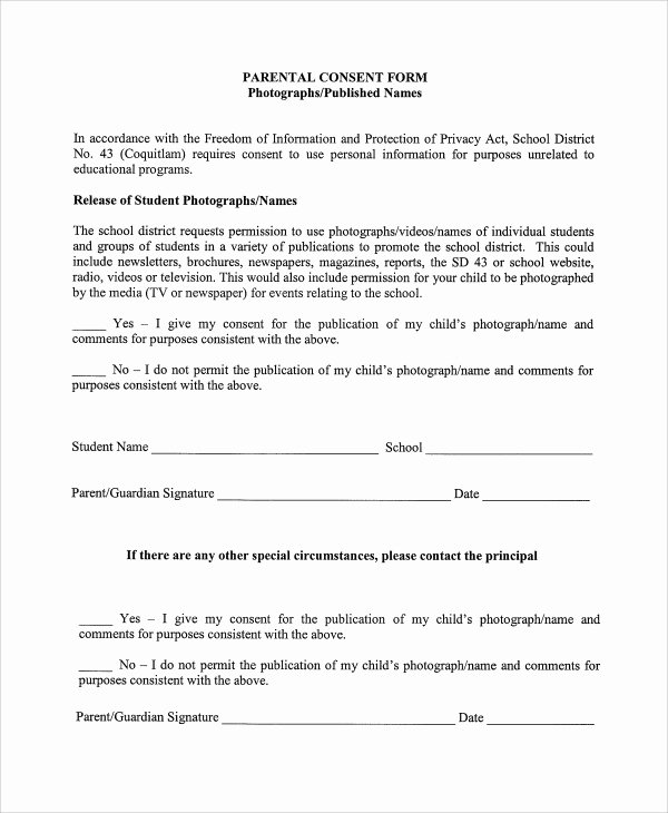 Parental Consent form Template Elegant 10 Graphy Consent forms