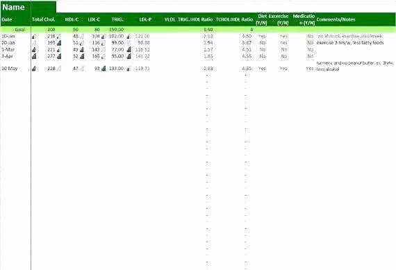 Password Manager Excel Template Elegant Password Template Excel – Stuarthannig
