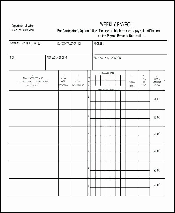 Payroll Reconciliation Excel Template Fresh Payroll In Excel format Xls – Whatafanub