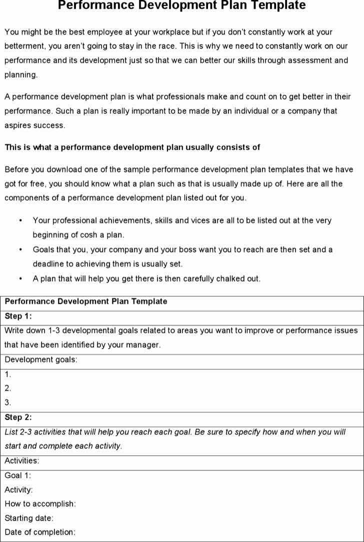 Performance Development Plan Template Elegant 6 Sample Performance Development Plan Templates to