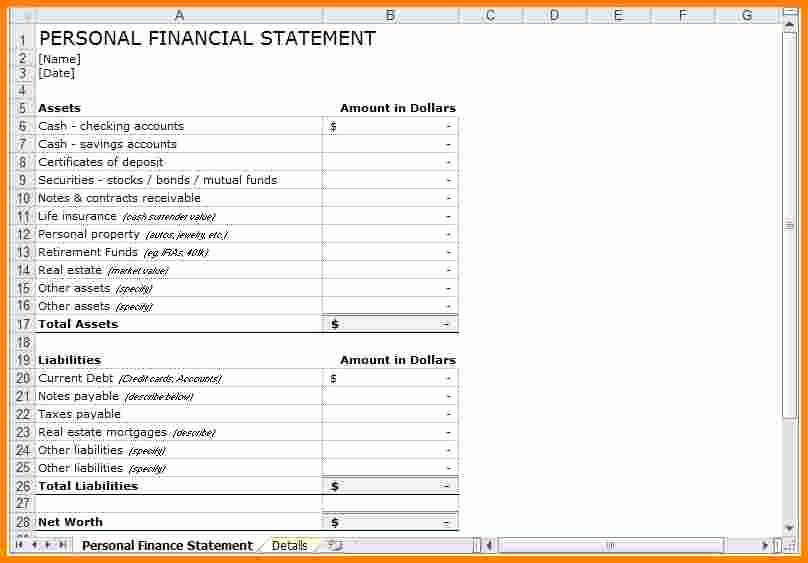 Personal Financial Statements Template Best Of 5 Personal Financial Statement Template