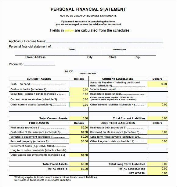Personal Financial Statements Template Elegant 8 Financial Statement Samples Examples Templates