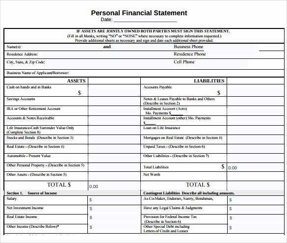 Personal Financial Statements Template New 12 Sample Personal Financial Statements