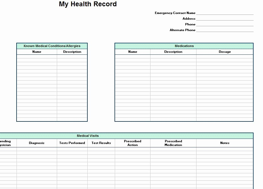 Personal Medical History Template Beautiful Personal Health Record Template