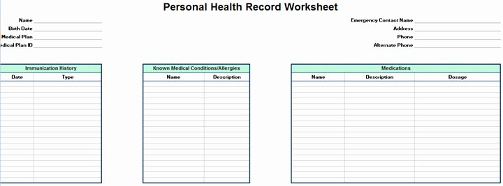 Personal Medical Record Template New Excel Template to Track Medical Expenses Excel Template
