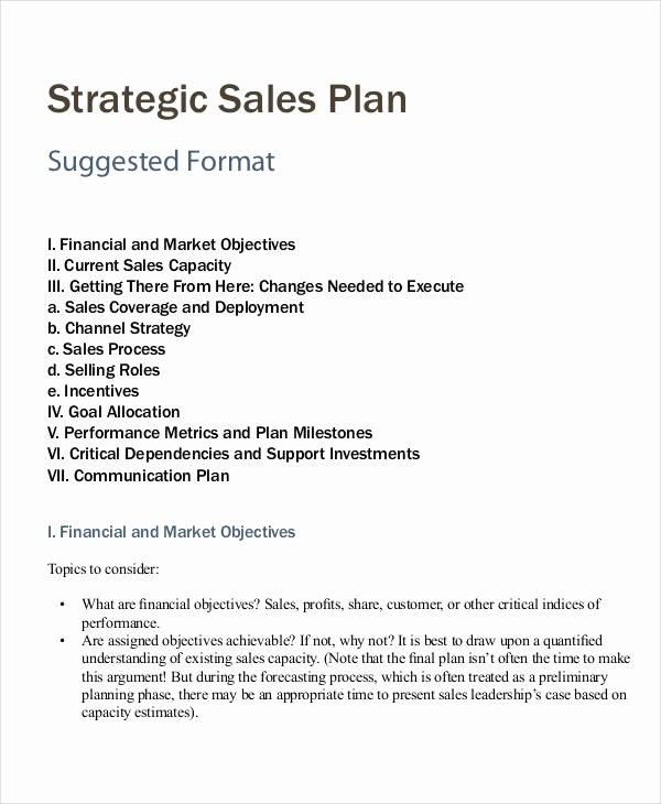 Personal Strategic Plan Template New Personal Sales Plan Templates 5 Free Pdf format