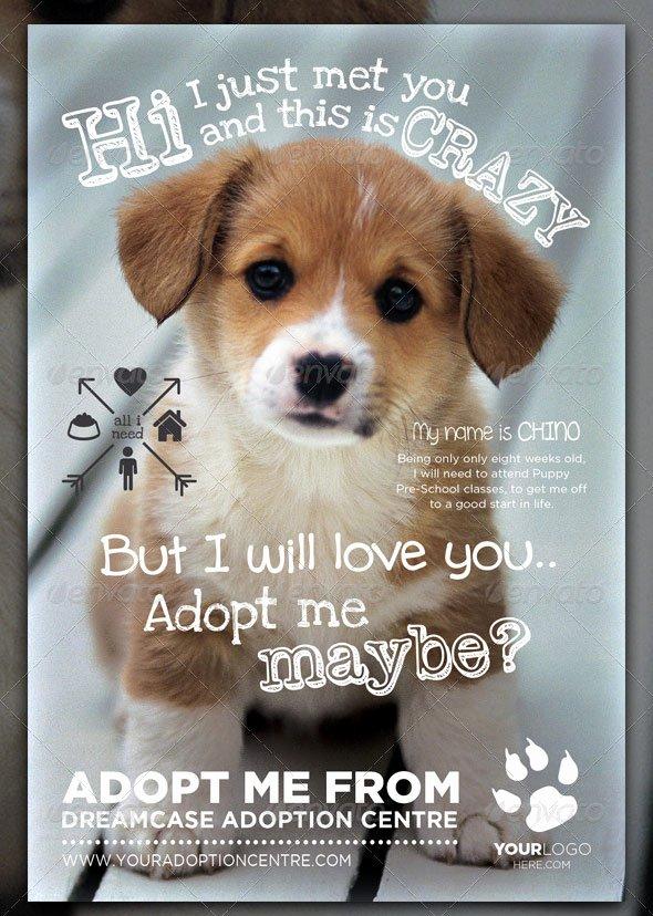 Pet Adoption Flyer Template Beautiful 20 Amazing Pet Service Psd Flyer Templates Print