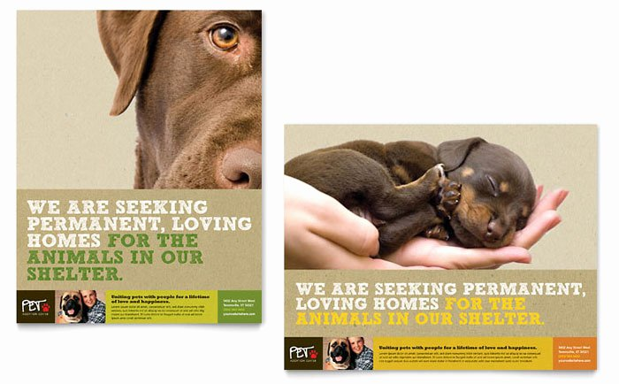 Pet Adoption Flyer Template Best Of Animal Shelter & Pet Adoption Poster Template Design