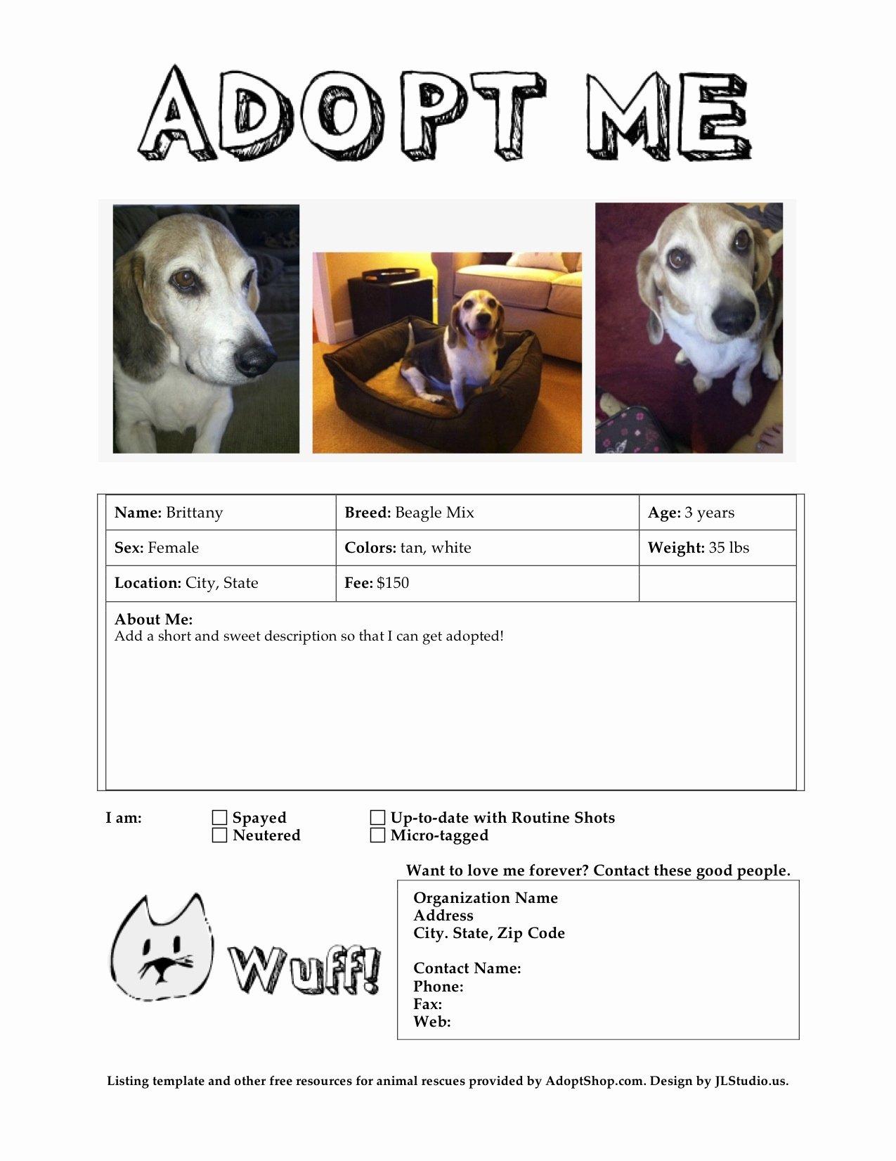 Pet Adoption Flyer Template Inspirational Meow Wuff Adoption Flyer Templates