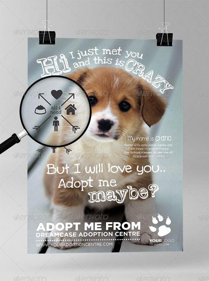 Pet Adoption Flyer Template Inspirational the 25 Best Pet Adoption Center Ideas On Pinterest