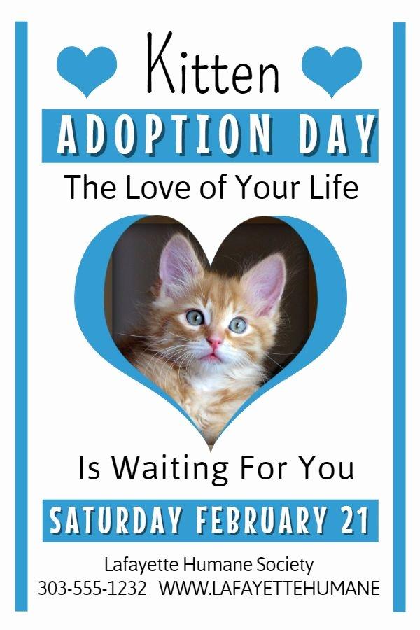 Pet Adoption Flyer Template Luxury Cat Adoption Flyer Template – Bryan Flyers