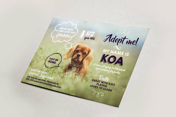 Pet Adoption Flyer Template New 14 Adoption Flyer Designs & Templates Psd Ai