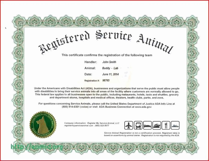 Pet Health Certificate Template Awesome Pet Health Certificate Template Best Luxury Turabian