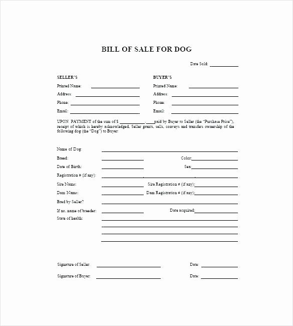 Pet Health Certificate Template Inspirational Rabies Vaccination Certificate Template – Haydenmedia