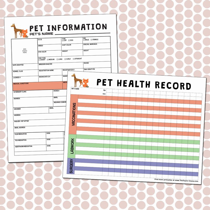 Pet Health Record Template New Free Printables Pet Care
