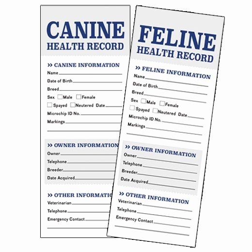 Pet Health Record Template New Unique Dog Vaccination Record Template Motif Example
