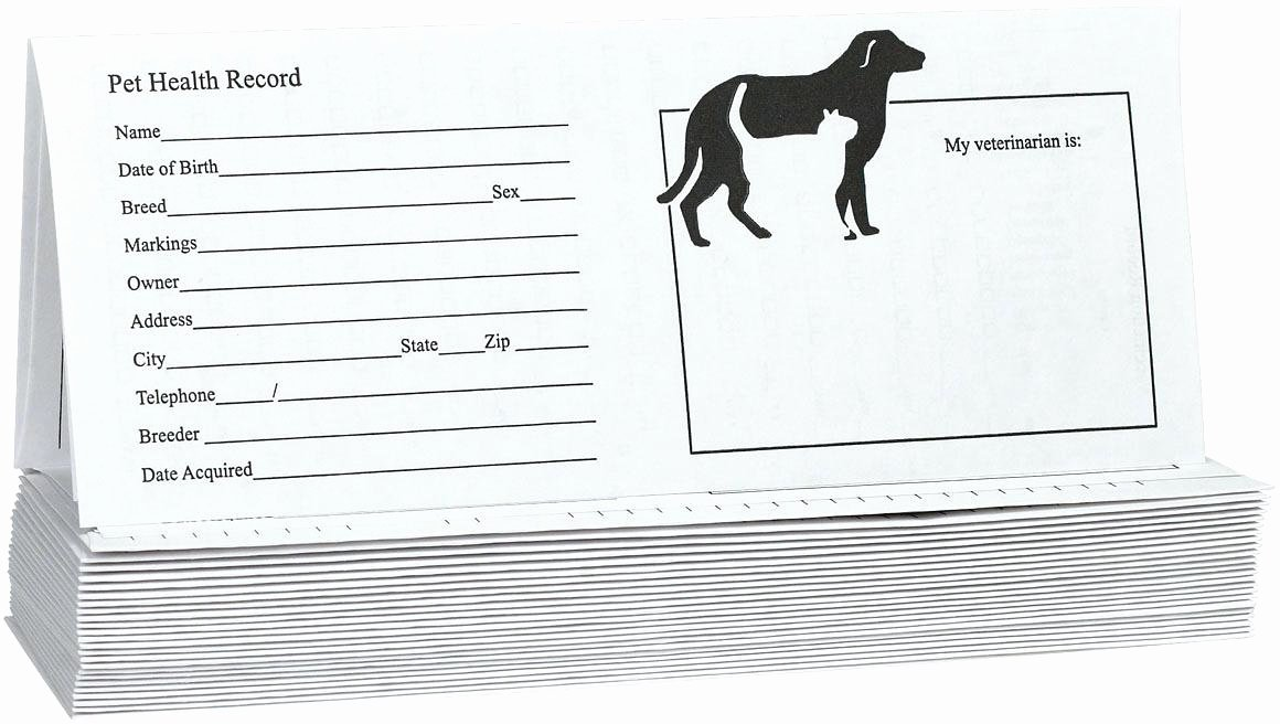 Pet Vaccination Record Template Fresh Pet Vaccination Record Template Canine Printable Dog