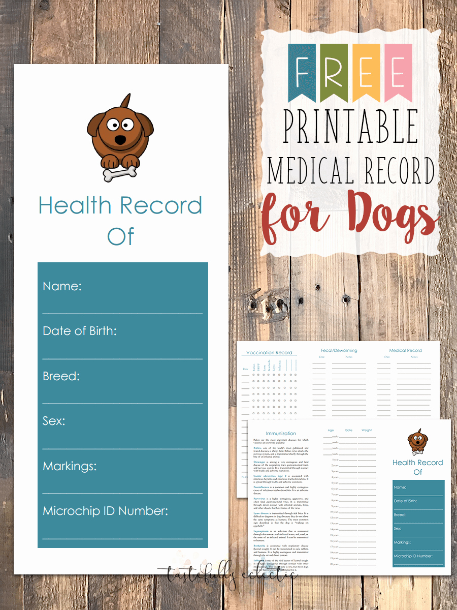 Pet Vaccination Record Template Luxury Free Printable Medical Record for Dogs Tastefully Eclectic