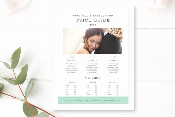 Photography Price Sheet Template New 15 Free and Premium Sell Sheet Templates Webprecis