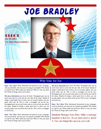 Political Campaign Plan Template Awesome Free Political Campaign Flyer Templates Yourweek