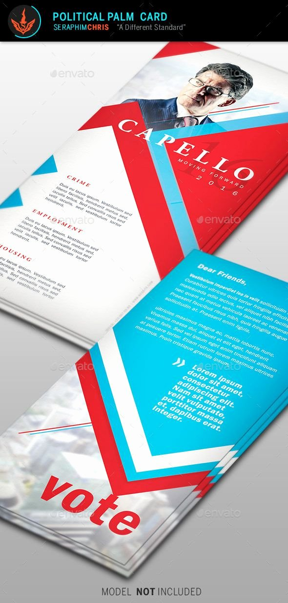 Political Campaign Plan Template Inspirational Best 25 Political Campaign Ideas On Pinterest