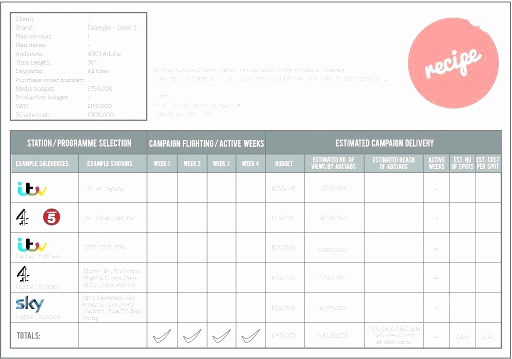 Political Campaign Plan Template Luxury Political Campaign Timeline Template Representative Flyer